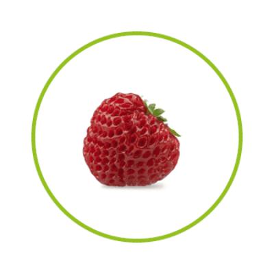 Strasberry