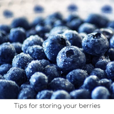 Tips for storing your berries