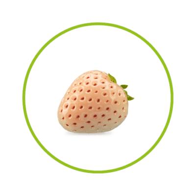 Whiteberry