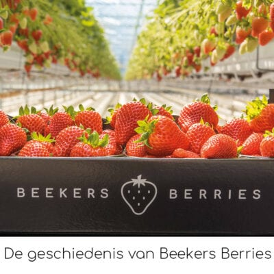 De geschiedenis van Beekers Berries