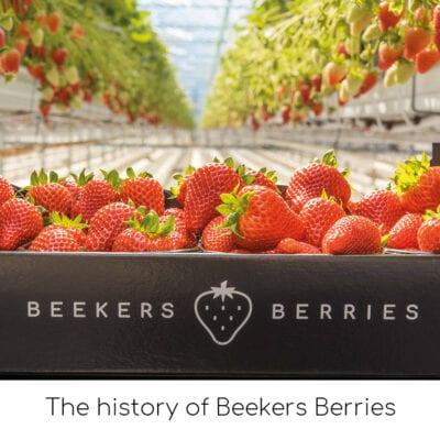 The history of Beekers Berries
